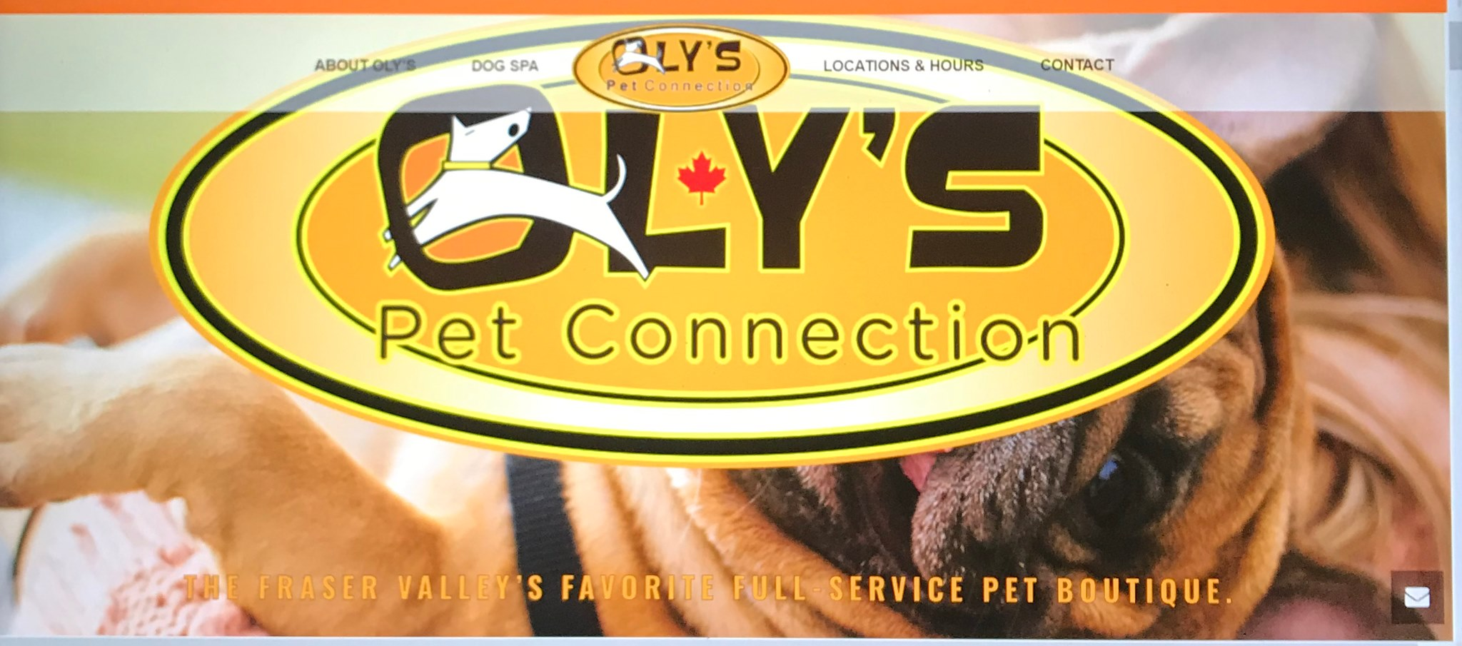 Oly's Pet Connection logo