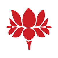 Vi SOL Massage & Wellness logo