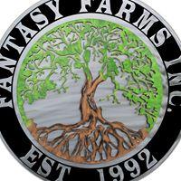 Fantasy Farms Inc logo