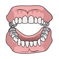 Peace Arch Denture Clinic logo