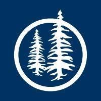 Blue Pine Enterprises Ltd logo