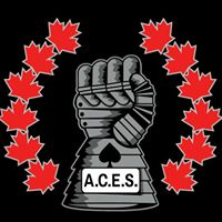 Aces Protection Group logo