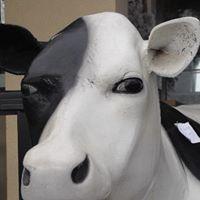 Crazy Cows Ice Cream logo