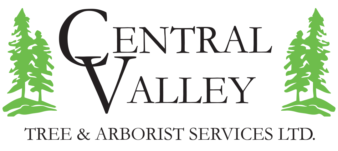 Central Valley Tree & Arborist Services Ltd logo
