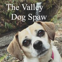 The Valley Dog Spaw logo