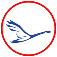 Gill International Travel logo