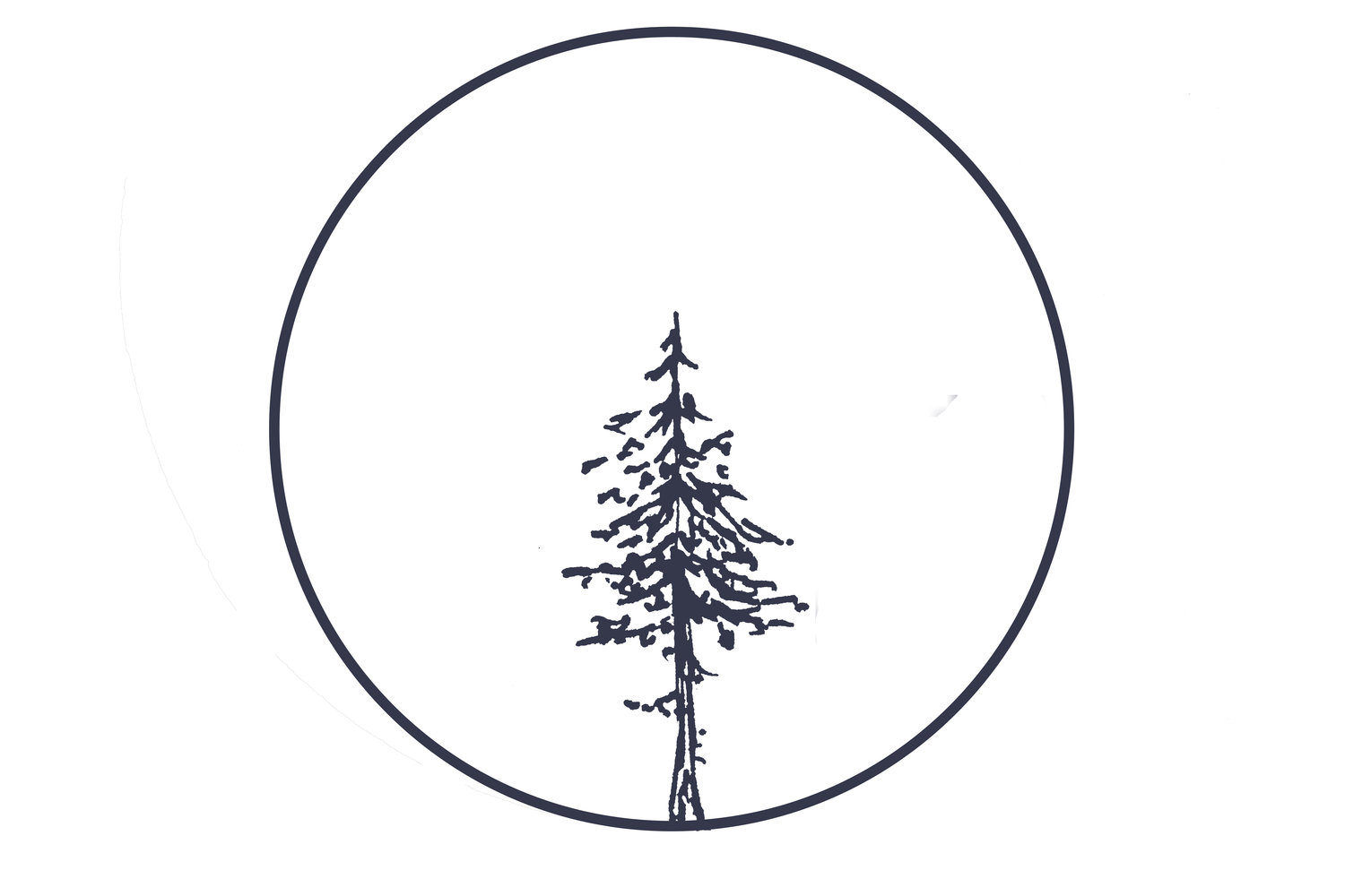 Pinewood Hand Therapy logo