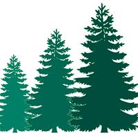 Brookswood Tax Services logo