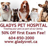 Gladys Pet Hospital logo