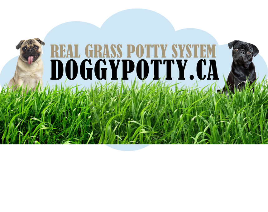 Doggy Potty Chilliwack logo