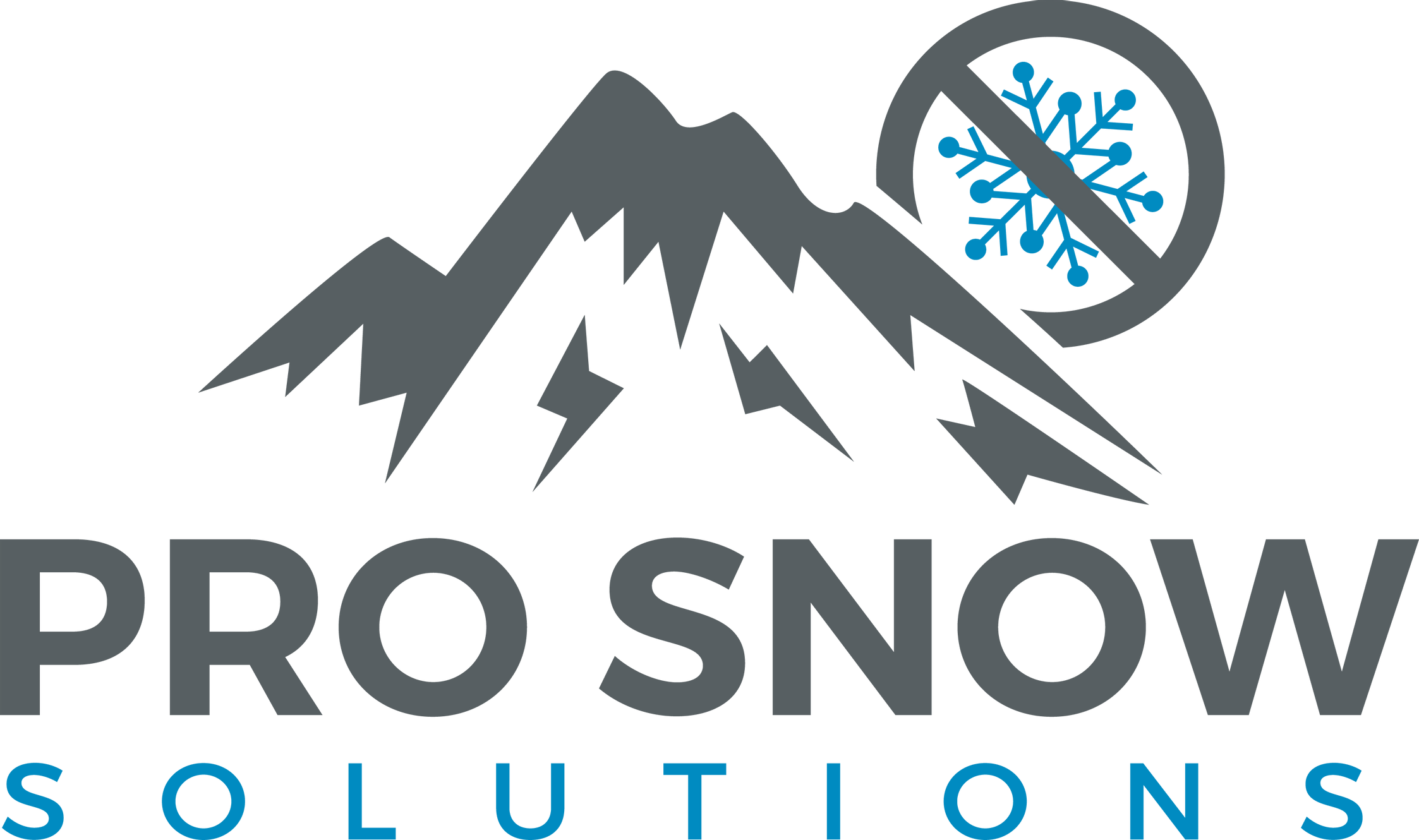Pro Snow Solutions logo
