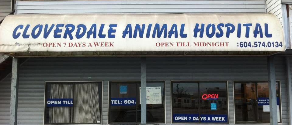 Cloverdale Animal Hospital logo