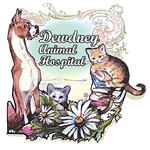 Dewdney Animal Hospital Ltd logo