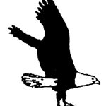 Eagle Tile logo