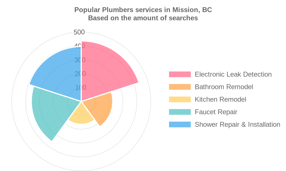 Popular services provided by plumbers in Mission, BC