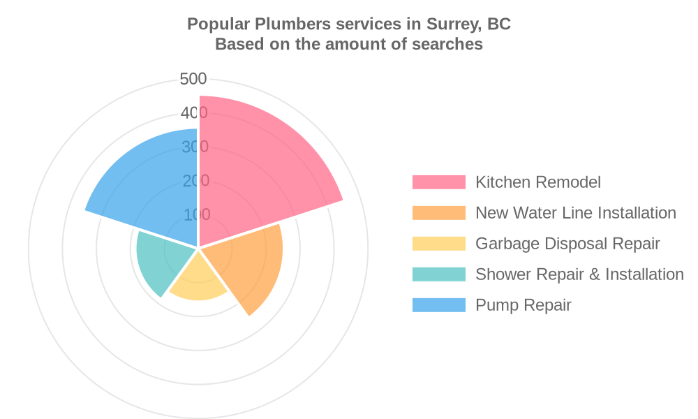 Popular services provided by plumbers in Surrey, BC