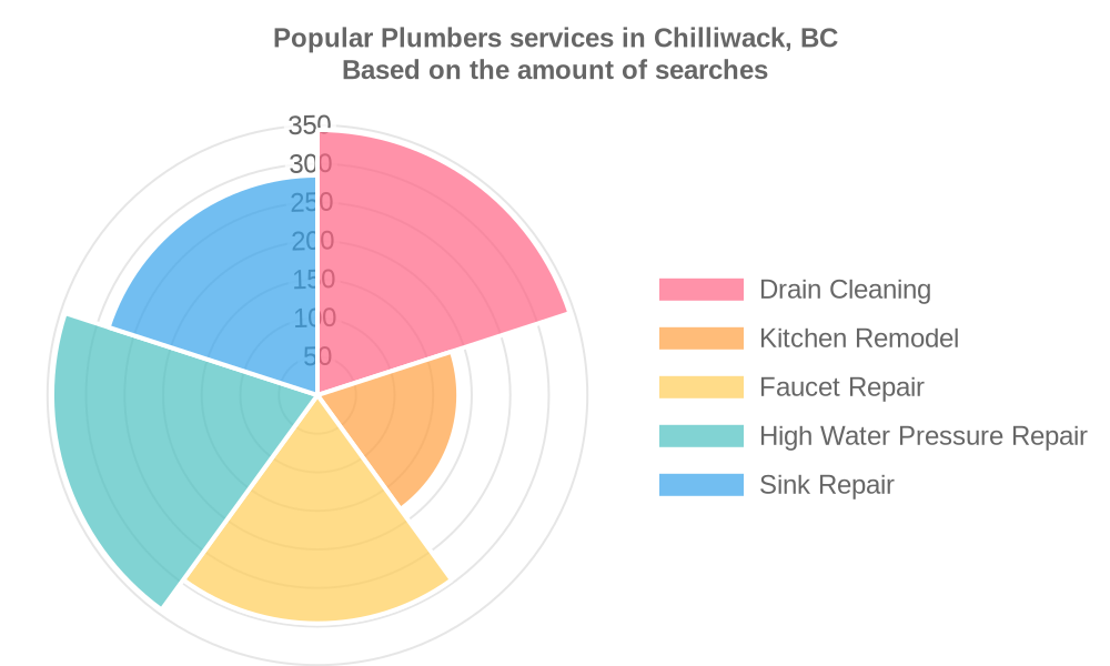 Popular services provided by plumbers in Chilliwack, BC