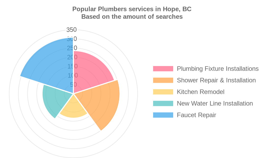 Popular services provided by plumbers in Hope, BC