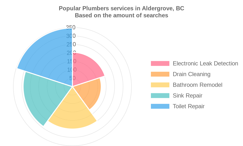 Popular services provided by plumbers in Aldergrove, BC