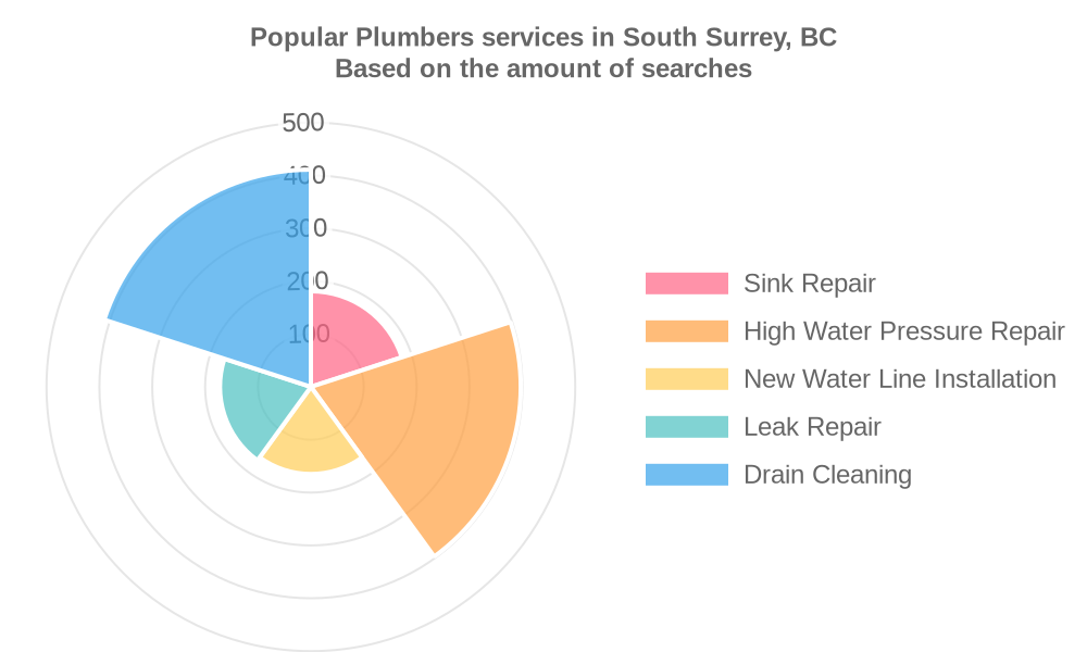 Popular services provided by plumbers in South Surrey, BC