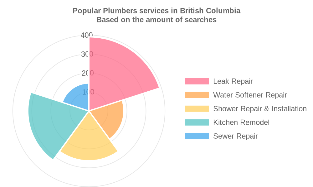 Popular services provided by plumbers in British Columbia