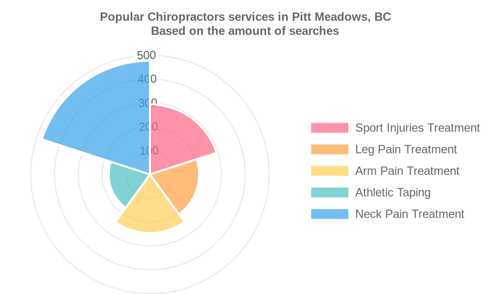 Popular services provided by chiropractors in Pitt Meadows, BC