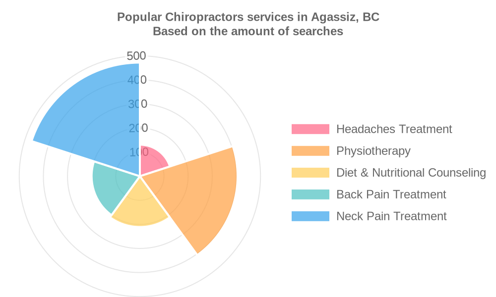 Popular services provided by chiropractors in Agassiz, BC