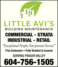 Yellow Pages Ad of Little Avi's Building Maintenance Services