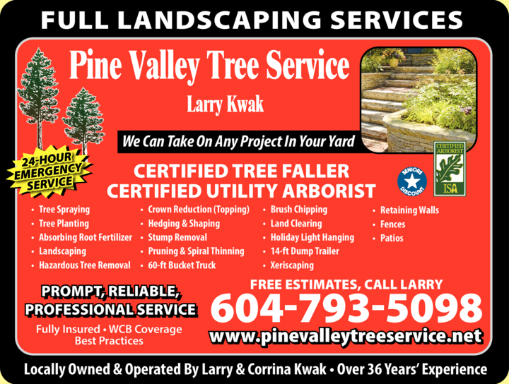 Yellow Pages Ad of Pine Valley Tree Service Landscaping