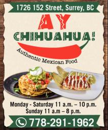 Yellow Pages Ad of Ay Chihuahua