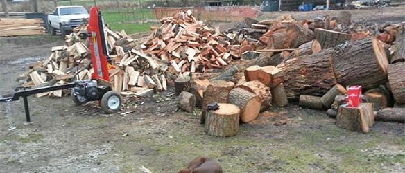 Photo uploaded by Riteway Tree Service Ltd