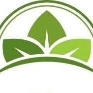 Grove Pharmacy logo