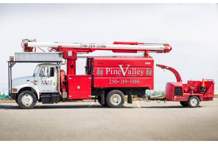 Photo uploaded by Pine Valley Tree Service Landscaping