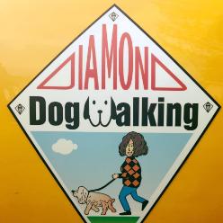 Diamond Dog Walking logo