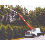 Arsenault Tree Service logo